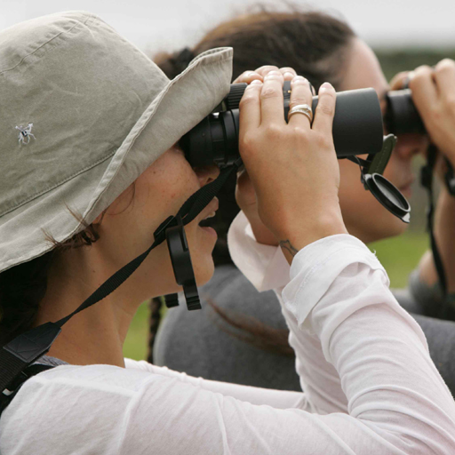 All-Rounder Binoculars