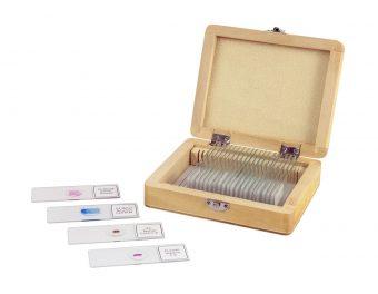 Prepared Slides - 25 Piece Box